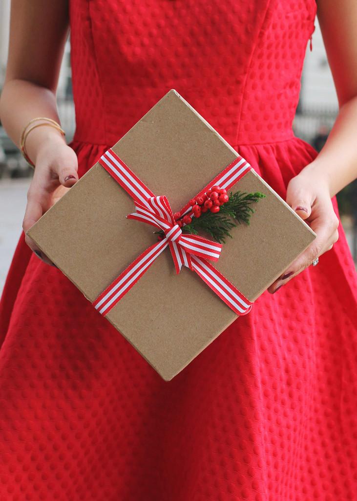 Skirt The Rules // Little Red Dress