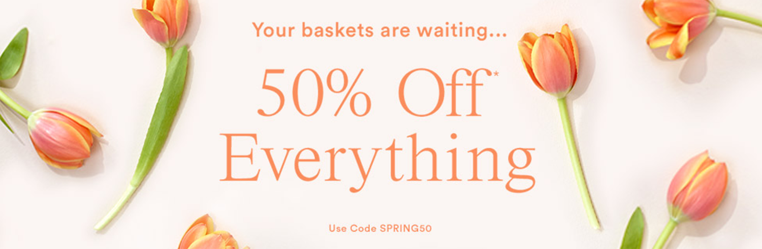Ann Taylor 50% off Everything